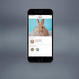 BLEPI-App