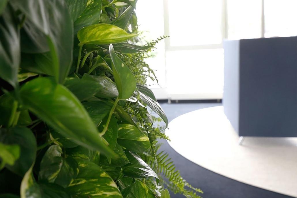Grünstes Büro Stuttgarts