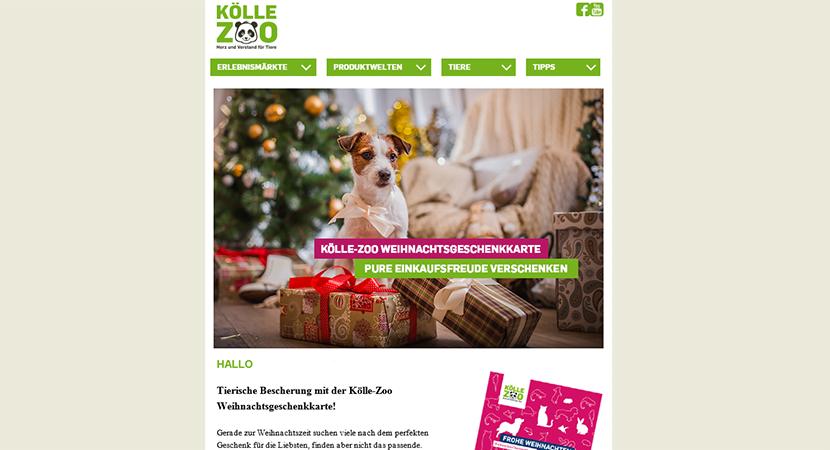 Kölle Zoo Newsletter Marketing
