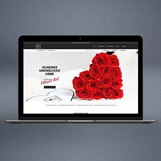 Love Flowerbox Referenz Teaser – Front page on Mac