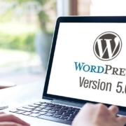 WordPress Update zu Version 5.0 Teaser