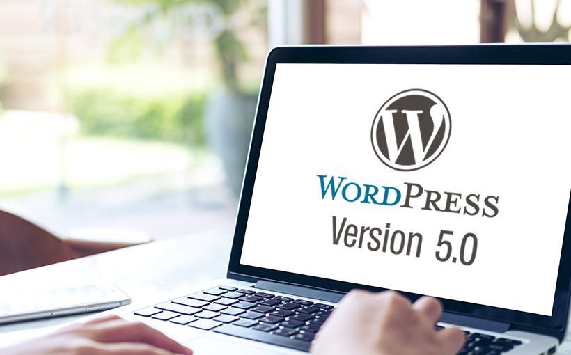 WordPress Update zu Version 5.0 Teaser