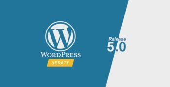 WordPress 5.0 Release Update