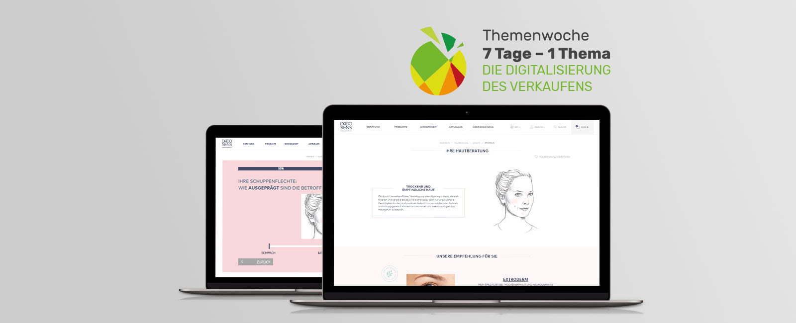 econsor Screen mit Beratungstool für Dadosens